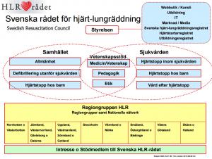 Svenska HLR Rådets organisationsplan